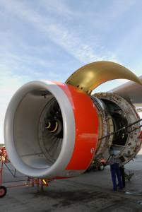 Aviation Workforce