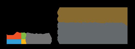 Dynamics 365 Gold ERP Partner